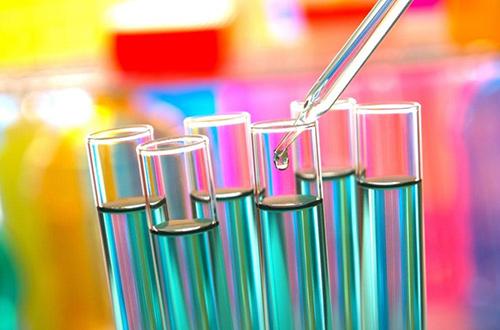 Анализ мокроты на грибок Candida